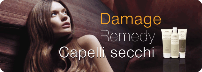 aveda_damage_remedy_capellisecchi
